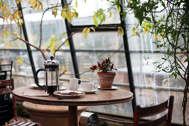 Kaffeesatz als Dünger im Garten